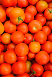 Close up of many fresh red tomatoes Royalty Free Stock Images
