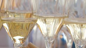 Many wine glasses. Close up of many glasses with sparkling wine stock footage