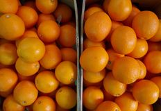 Close up many orange Stock Photos