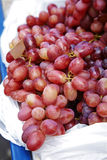 Close up many red grape Stock Photography