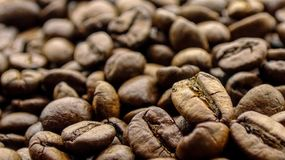 Close up of grains coffee stock photos