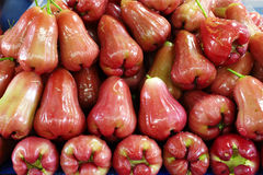 Close up many rose apple Royalty Free Stock Image