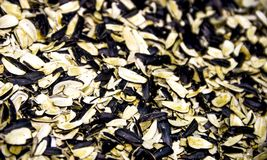 Sunflower seed shells. Close-up a many shells of sunflower seed Stock Images