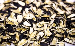 Sunflower seed shells. Close-up a many shells of sunflower seed Stock Photo