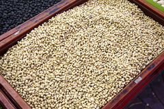 Close up many soy bean Stock Photos