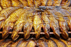 Close up many yellow dry fish Stock Photo