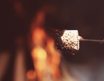 Close up of a marshmallow on a stick being roasted Stock Photos