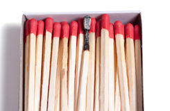 Close-up of matches Stock Image