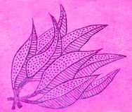 Hand drawn picture of leaves on pink Royalty Free Stock Photo