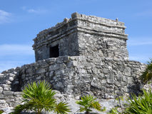 Close-up of Mayan Temple in Tulum, Mexico Royalty Free Stock Photo