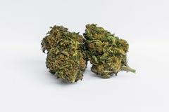 Close up of medical marijuana buds royalty free stock image