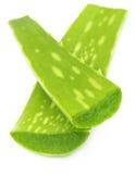 Close up of medicinal aloe vera Stock Image