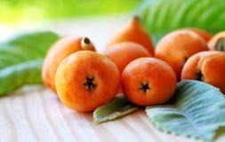 Close-up of medlar fruit Stock Image