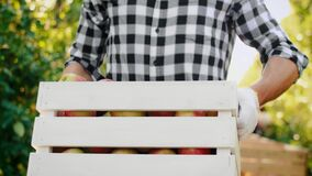 Close up of men carrying a full crate of apples