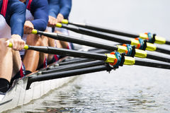 Close up of men's rowing team. Close up of a men's quadruple skulls rowing team, seconds after the start of their race
