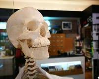 Close-up menselijk lichaamsdeel Stock Afbeeldingen