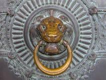 Close Up Metal Lion`s Head Doorknocker Stock Photos