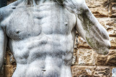 Close up of Michelangelo's David statue chest in Piazza della Si Royalty Free Stock Images