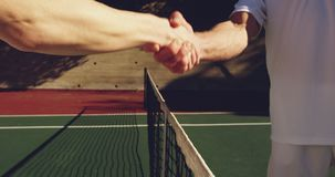Woman and man playing tennis on a sunny day stock video