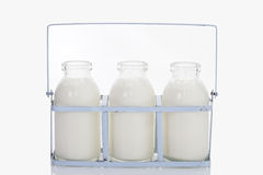 Close up of milk bottles in rack on white background Royalty Free Stock Image