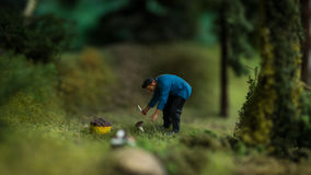 Close up of Miniature world Royalty Free Stock Photography