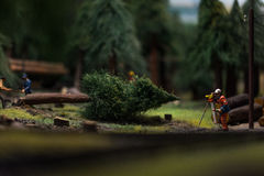 Close up of Miniature world Stock Image