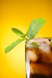 Close-up of mint in cola Stock Image