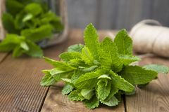 Close up mint leaves on wooden background. Summer drinks or dessert ingredient. Rustic style. Isolated mint. Close up mint leaves on wooden background. Summer royalty free stock image