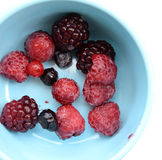 Close up of mixed berries fruit Royalty Free Stock Image