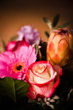 Close up mixed flowers. Close up image with mixed colorful flowers Royalty Free Stock Images