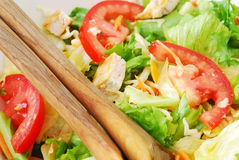 Close-up mixed salad with chicken Royalty Free Stock Images