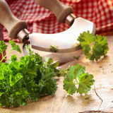 Close up of a modern herb cutter Royalty Free Stock Photo