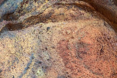 Close up molded rye bread background texture Royalty Free Stock Photo