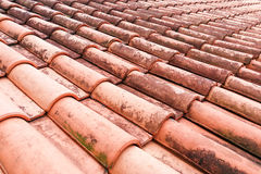 Close-up on moldy roof tiles in humid tropical climate. In Malaysia Royalty Free Stock Photography