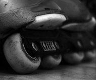 Close up monochrome  shot of roller skates wheels Royalty Free Stock Photo