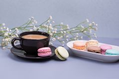 Close-up morning black cup of coffee with milk, cake macaron and flower on blue table. Beautiful dessert. Close-up morning black cup of coffee with milk, cake stock photography