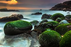 Nature Seascape with Rocks Covered by Green Mosses, Silky Water in Little Sunlight at Sunrise royalty free stock images