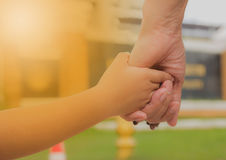 Close up of mother and a child hands at the sunset. Mother holding a hand of son in summer day outdoors Stock Photography