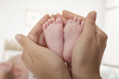 Close-up of mother holding her baby's feet Stock Images