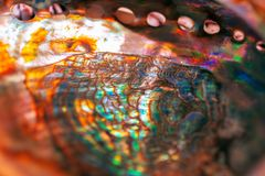 Close-up of mother of pearl. Multicolor texture of seashell, multicolor nacre texture. Colored nacre background stock photo