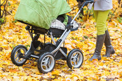 Close-up of mother strolling a pushchair with a sleeping baby. In yellow autumn park Stock Photos