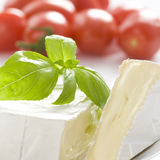 Close up on mouldy cheese. Mouldy cheese with basil leaves. Some tomatoes in background. Tight frame royalty free stock image