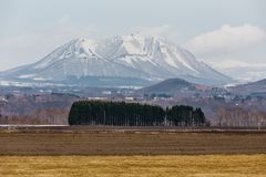 Close up Mount Yotei inactive stratovolcano with village on the foot hill and yellow grass on the ground in winter in Hokkaido Royalty Free Stock Image
