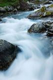 Close-up of mountain stream at long shutter speed. Royalty Free Stock Images