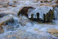 Winter stream. The close-up of mountain stream in the winter Royalty Free Stock Photography