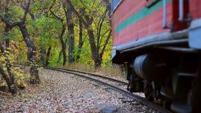 close-up movente Vermelho-azul do trem na floresta bonita do outono vídeos de arquivo