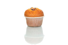 Close up of muffin isolated on white background. Calories Royalty Free Stock Photography