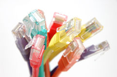 Close up of multi color network cable plugs Royalty Free Stock Photography