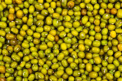 Close up of mung bean background Stock Photo