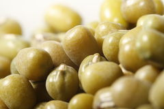 Close up of mung bean Royalty Free Stock Photo